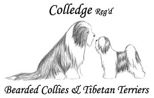 Colledge Kennels Logo