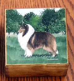 Rough Collie Square Box